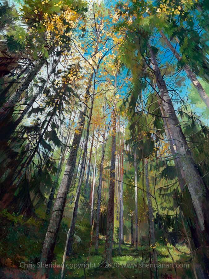 Chris Sheridan art beautiful painting of trees in Korpo